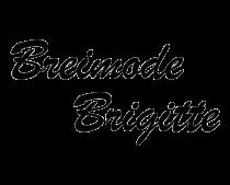 brigitte-logo-zw-kopie-thumbnail.png