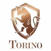 torino-valkenswaard-thumbnail.jpeg