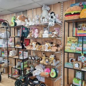 Eindhovens BESTE Speelgoedwinkel - Gestelse Bazar